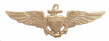 Naval Aviator Wings United States Navy USN Gilded Nickel Pin Badge / Brevet